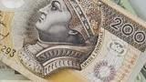 Pożyczki internetowe na raty- jak sfinansować większe wydatki?